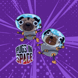 the logo of a car sticker, two astronaut pugs and the pugs in space logo on a purple graphic purple background